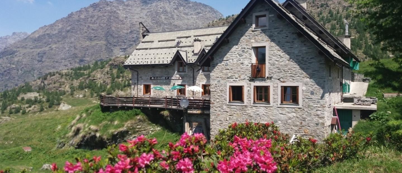 rododendri - rifugio ca runcasch