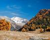 monte Disgrazia da Alpe Granda !