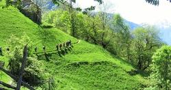 Traversata dal Rifugio Osteria Alpina  al Rifugio Frasnèdo