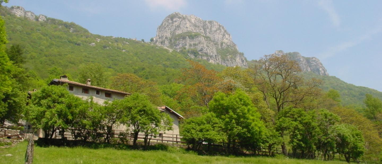 Terz'Alpe