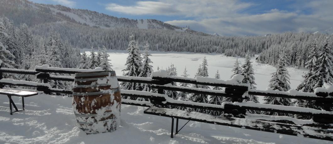 Palu' inverno 2016
