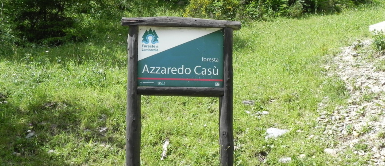Foresta Azzaredo Casù