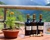 Volete degustare un buon vino locale?