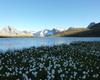 lago di Forbesana