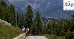 Alpe e lago di Arcoglio