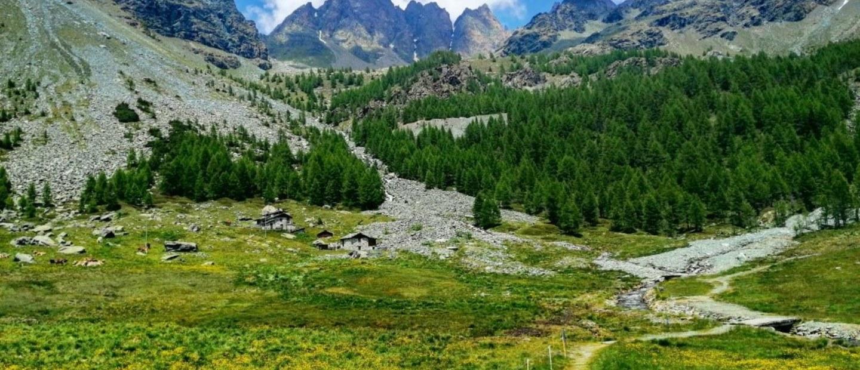 Alpe Musella