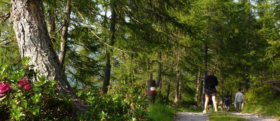 Area Valgrigna