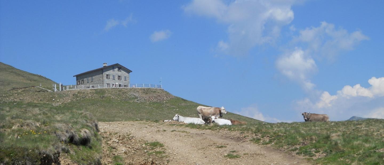 Il Rifugio Croce di Campo 1740 m in Val Cavargna