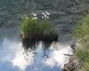 nuvole riflesse in lago rotondo