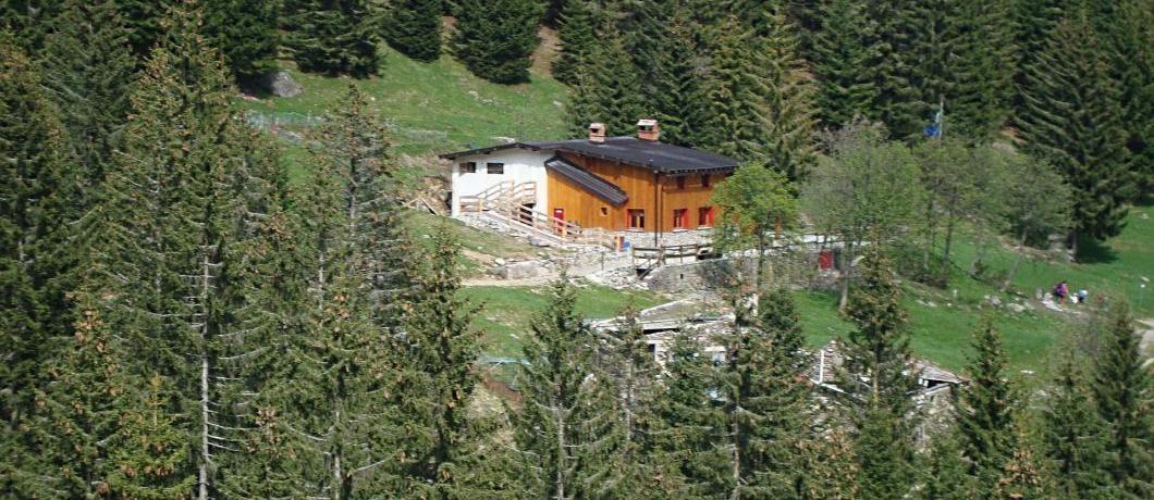 rifugio Alpe Corte tra alberi
