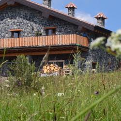 Monte Stino