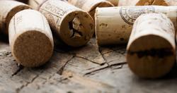 Alla scoperta della Lombardia territorio di vino