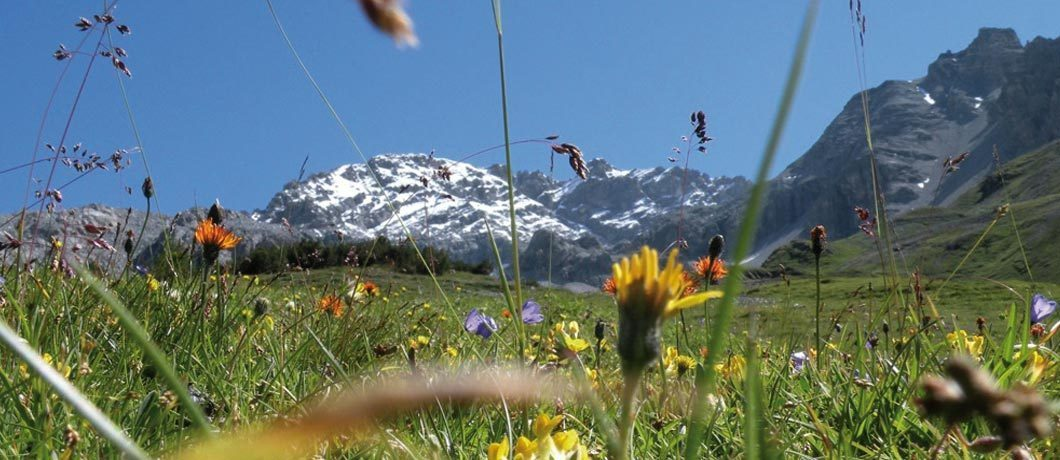 Val zebru rifugio quinto alpini