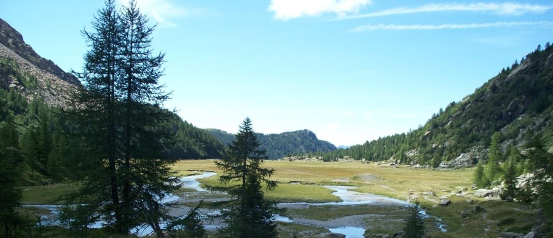 Alpe di Predarossa  m 2000